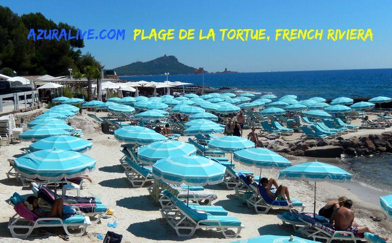 AzurAlive: Plage De La Tortue